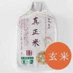 shinsei003
