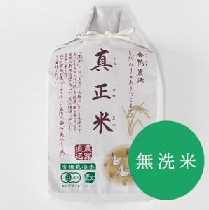shinsei004